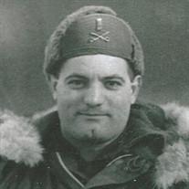 Giulio Louis DiSerafino
