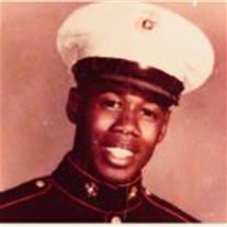 Mr. Robert  Brown Jr.