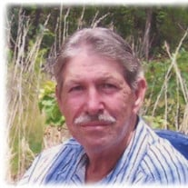 "Lesley Carmel ""L.C."" Pigg, Jr., 67, Iron City, TN"