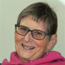 Sue Ann Schumm