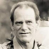 Robert  L.  Wilson Jr.