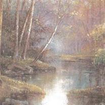 Eileen A. Cronin