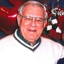 Rev. David  Sohl Schneider