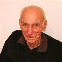 Anthony P.  Sebastianelli