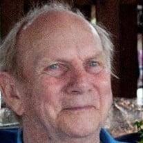 V. David Bassett