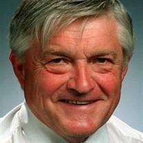 Dr.  Robert L.  Thurness