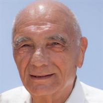 Silvio Oreste Bassi