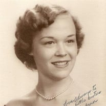Barbara Ann Porter
