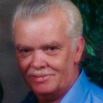 Mr. Hubert Sydney Reed