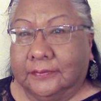 Monica Elaine Sanchez-Flores