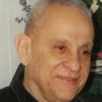 Dominic T. Paniccia Sr