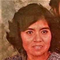 Cecilia Solares de Lara
