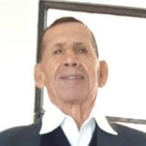 Vicente Vega Vallejos
