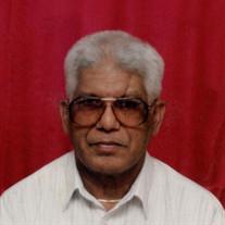 Harry  P. Singh