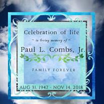 Mr. Paul L. Combs Jr.