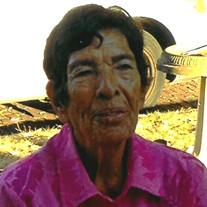 Rosa Troche Soto