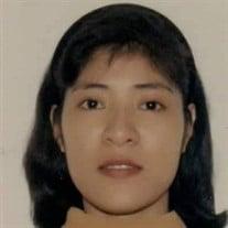 Mrs. Evelyn Domondon Ortiz-Luis