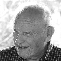 Mr. William Logan Jones