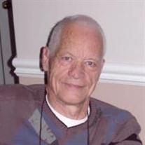 Mr. Albert Stein