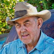Harold Dean  Peterson