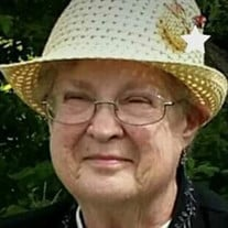 Janet E.  Schoonover