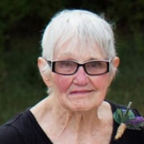 Nancy J Palmer (Seymour)
