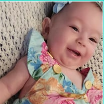 Baby Trinity Paige Barron