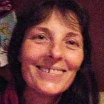 Shelly Jo  Switzer