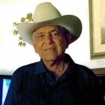 Raul L. Villarreal