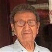 Alfredo V. Burgos