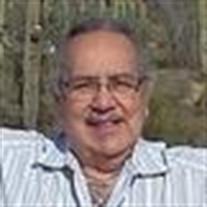 Mr.  Steven Alvarez-Wiemann