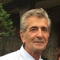 Mr. Steve J. Cardile
