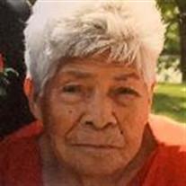 Celia Arreguin