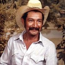 Arnulfo R. Hernandez-Estrada