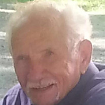 Robert Lee Taylor