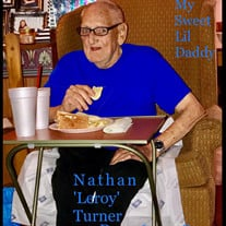 Mr. Nathan Leroy Turner