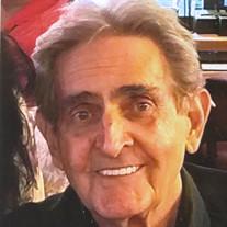 Mr. Lawrence R. Triolo