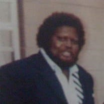 Mr. Robert  Lee Williams