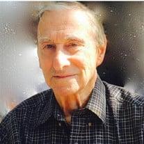 David  Michael Alperin