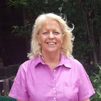 Debra Ann Hogan-Schmidt