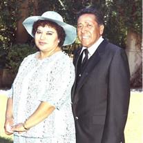 Mr. Manuel  Vargas Hernandez