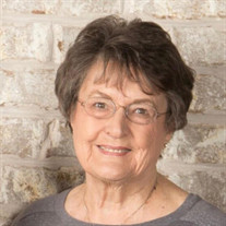 JoAnn VanLeuven Ludlow