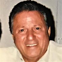 Domenic G. Ruffa Jr.