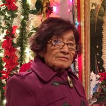 Lina Alvarez Casarrubias