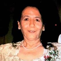 Virginia Silva Castillo