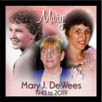 Mary J. DeWees