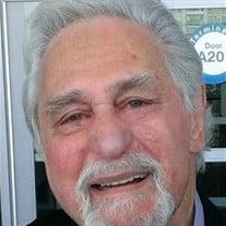 Joel Herbert Siegel