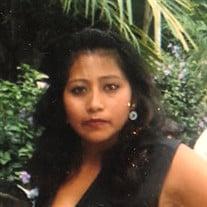 Brenda Vicente-Recinos