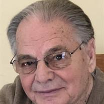 Angelo D'Adamo