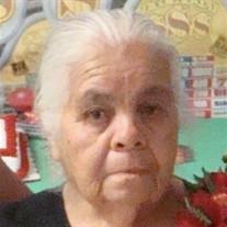 Maria Concepcion Hernandez